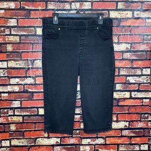 Size 14 Gloria Vanderbilt Avery Cropped Jeans